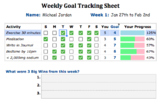 Goal Tracking / Habit Building Sheet with Auto-Calculated