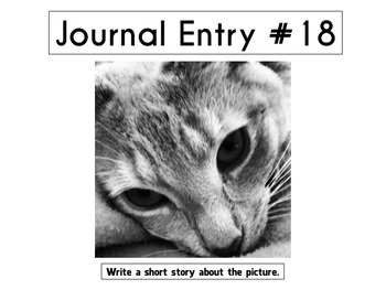 Daily Journal Prompts (One quarter, 9 weeks, 45 days worth of Writing Prompts)