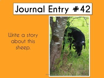 Daily Journal Prompts #3