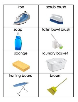 Daily Living Skills: Cleaning Supply Flashcards