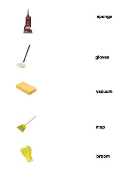 Daily Living Skills: Cleaning Supply Matching