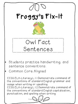Daily Oral Language - Froggy's Fix-it!  Morning Work - Owl Non-fiction Sentences