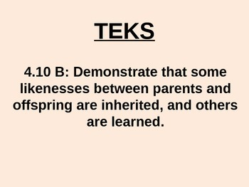 """Daily Quick Checks, """"Learned v. Inherited Traits"""" (Sceince TEKS 4.10B)"""