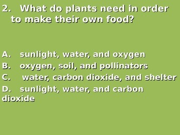 """Daily Quick Checks, """"Photosynthesis"""" (Science TEKS 4.9A)"""