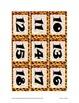 Daily Schedule Calendar Cards-93pc-Leopard