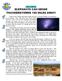 Daily Science 15 : Elephants and Thunderstorms (article, question, key)