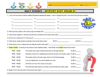 Daily Science 26 : Mystery Body Organ #1 (anatomy) - article & worksheet & key