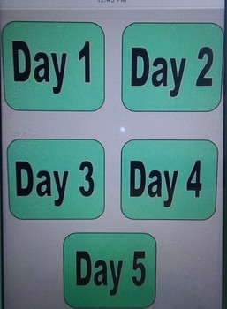 Daily Special's Schedule