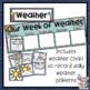 New Zealand Daily Wall Calendar Display Kit
