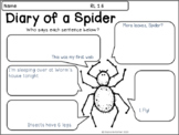 Dairy of a Spider - Who is Telling the Story?