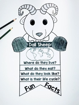 Dall Sheep Craft