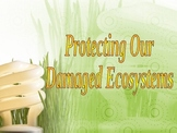 Damaging Ecosystems PPT