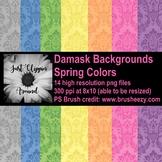 Damask Digital Backgrounds - Spring Colors