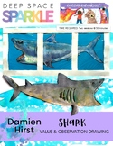 Damien Hirst Shark Lesson Plan