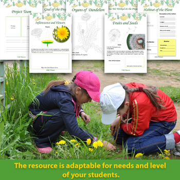 Dandelion: Herbarium Project and Teacher's Guide/ Science Outdoors Activities