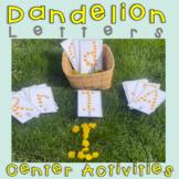 Dandelion Literacy Center Activities