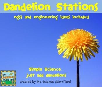 Dandelion Stations: Simple Science