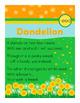 Dandelion - eed Word Family Poem of the Week