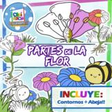DaniClipArts - Partes De La Flor ( Creaciones originales en formato PNG)