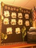 Jungle Genre Wall
