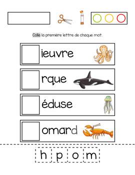 Dans la mer mathématique et français
