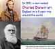 Darwin, Evolution, Finches - Lesson Presentations, Lab Experiment, Videos