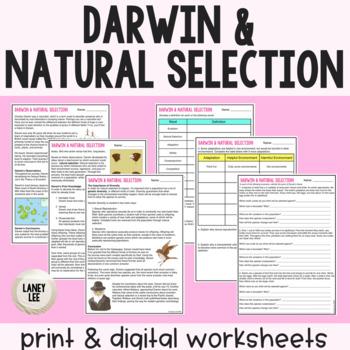 Darwin, Natural Selection, & Evolution - Guided Reading + Worksheets