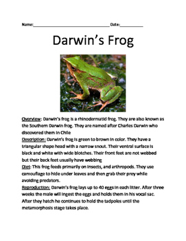 Darwin's Frog - Darwin review article information facts questions vocabulary
