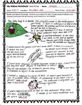 Darwin's Notebooks