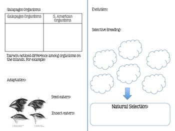 Natural Selection Lesson Pack