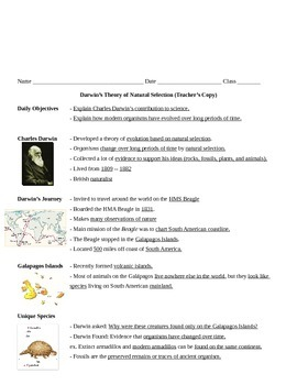 Darwin's Theory of Natural Selection Notes