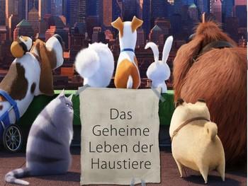 Das Geheime Leben der Haustiere - Introducing pets with Secret life of Pets
