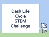 Dash Butterfly Life Cycle STEM Project