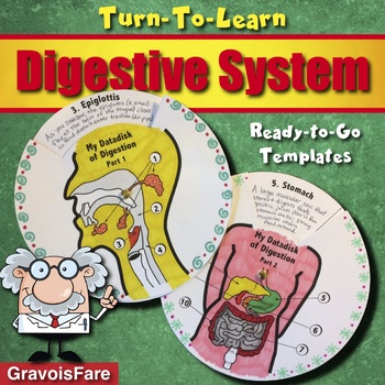 Digestive System -- Two Data Disks of Digestion -- A Hands-on Activity
