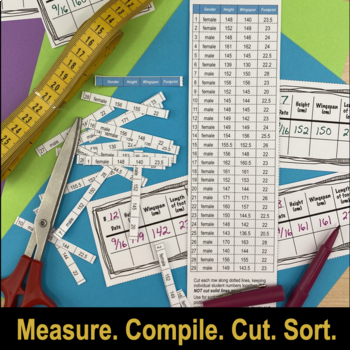 Measurement & Data Graphing Activities