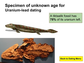 Date a Dinosaur Half-Life Activity