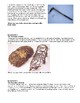 Otzi the Iceman - Lesson Handout