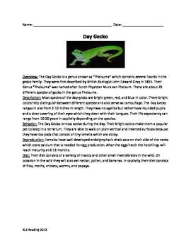 Day Gecko Lizard - Review Article Facts Information Questions Vocab Word Search