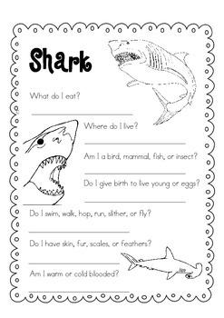 Day Packet - Shark { freebie }