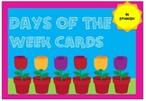 Days of the Week Cards -  Spanish