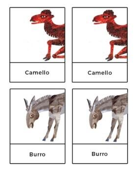 De la Cabeza a los Pies // From Head to Toe by Eric Carle