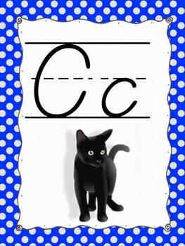 DeNealian Alphabet Posters