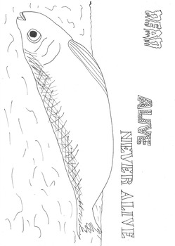 Dead, Alive, Never Lived: Ocean Theme: Dead Fish Worsheet to Colour In