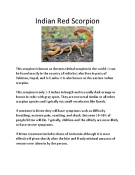 Deadliest Scorpions - lesson of 3 deadly scorpions facts review questions