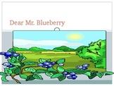 Dear Mr Blueberry Powerpoint
