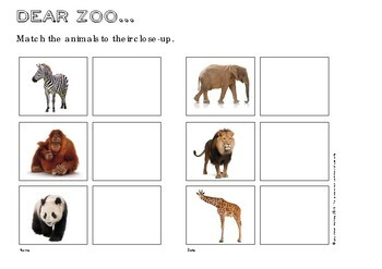 Dear Zoo Book Based Activities