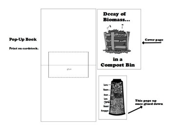 Decay of Biomass in Compost Bin PopUp Foldable