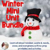 Winter / Christmas Non-Fiction Mini Unit Bundle