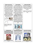 December Holiday Elementary Art Activities Bundle