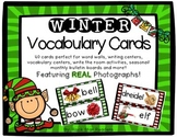 Winter Vocabulary Word Wall Cards [winter/holiday] REAL photos!